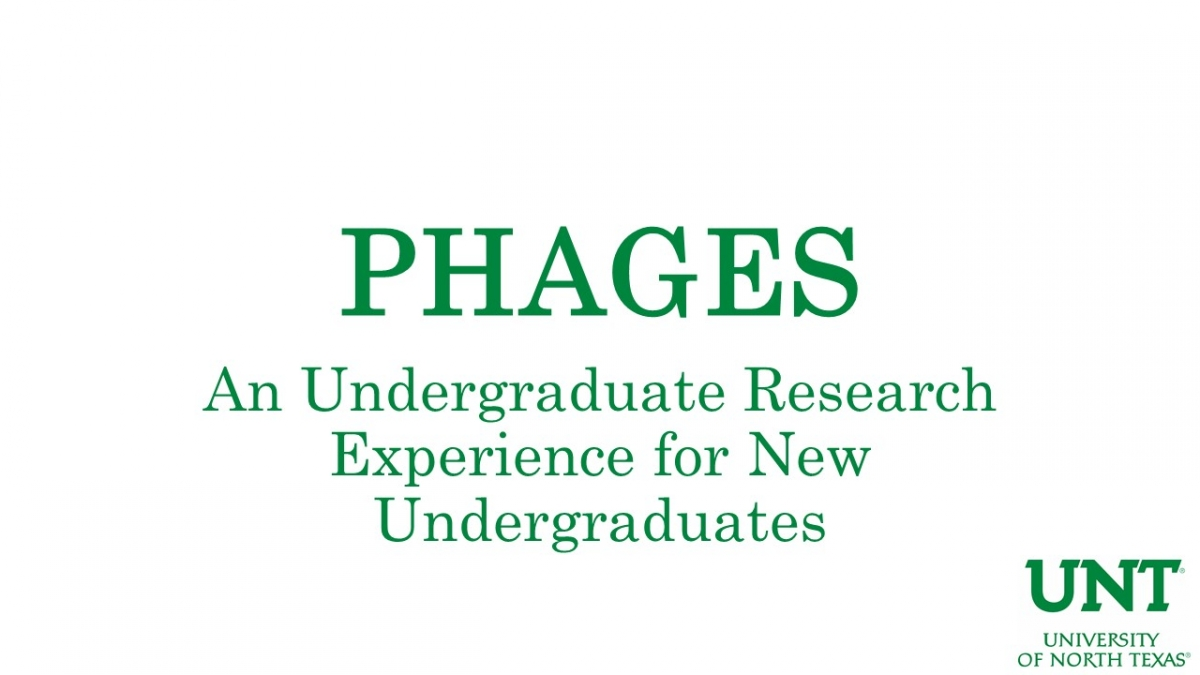 PHAGES Program Introductory Video Link Image